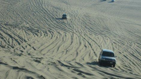 Dune Bashing Qatar