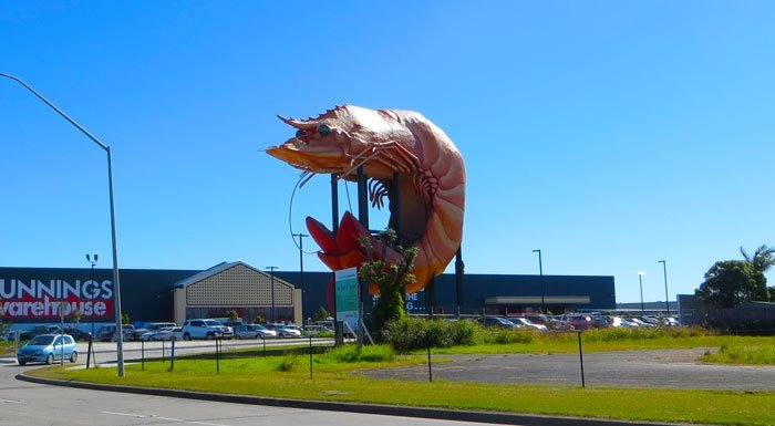 Ballina Big Prawn, Australian East Coast Road Trip