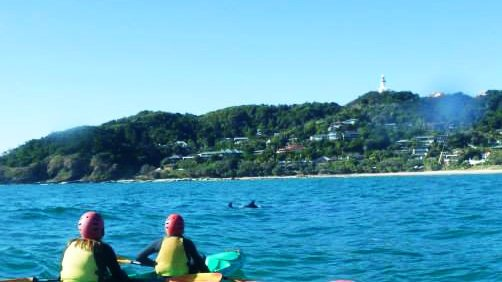 Kayak, Dolphins and Lighthouse  - Australian East Coast Road Trip